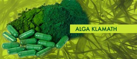 alga-klamath